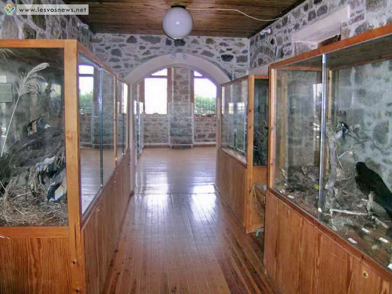 museum-03
